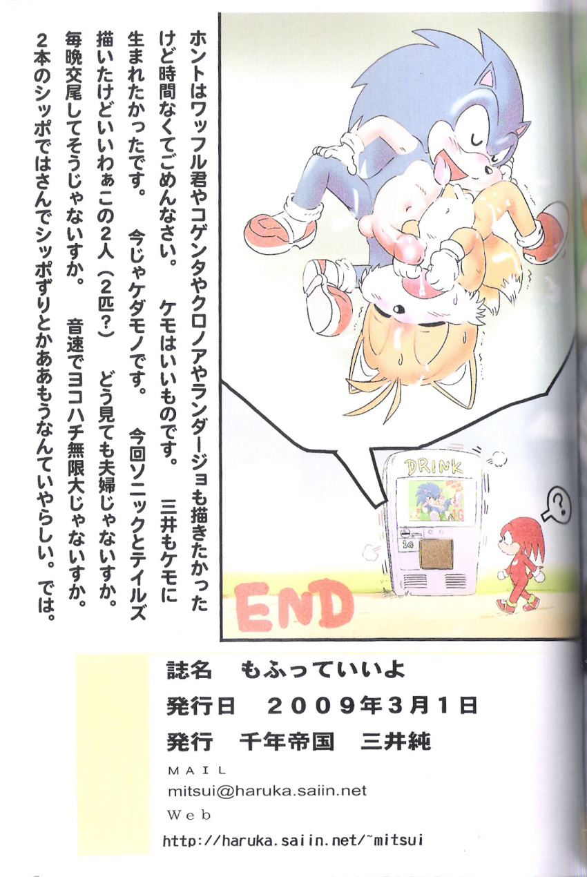 furry mitsui-jun penis sonic_(series) sonic_the_hedgehog tagme tails