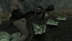 argonian black_scales breasts cabbage exhibition exhibitionism hindpaw horn human inter_species nipples outside paws penetration penis public pussy raised_leg red_eyes rocks scalie sex talonia_bloodscale the_elder_scrolls the_elder_scrolls_v:_skyrim toes vaginal_penetration vaginal_penetration video_games