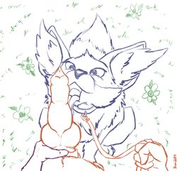 anthro anthro_on_feral brunn-bear canine erection female fennec fennekin feral first_person_view fox interspecies knot leash licking male mammal nintendo nude open_mouth oral oral_sex penis penis_licking pet_play pokemon sex sketch tongue tongue_out video_games zoophilia