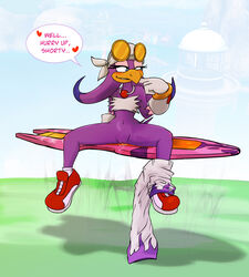 anthro avian bird dulce_isis female hover_board sega sonic_(series) sonic_riders wave_the_swallow