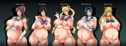 5girls belly big_belly big_breasts black_hair blonde_hair blue_hair breasts brown_hair female group nipples nude pregnant rosa_(artist) sailor_jupiter sailor_mars sailor_mercury sailor_moon sailor_venus thick_thighs wide_hips