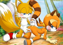 furry marine mobius_unleashed palcomix sega sonic_the_hedgehog tails
