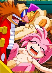 amy amy_rose cream cream_the_rabbit dr_eggman eggman furry mobius_unleashed palcomix sega sonic_the_hedgehog