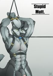 abs anthro arms_behind_head ball_gag balls biceps black_nose bondage bondage bondage_gear bound canine canine chest_tuft collar cuffs flaccid fur gag green_eyes grey_background grey_fur grey_hair grey_penis hair harness humanoid_penis leash looking_at_viewer male mammal muscles nude pecs penis plain_background pose solo spazzyhusky standing toned tuft uncut