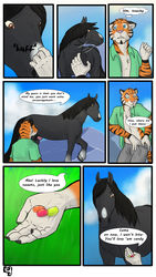 anthro comic equine feline feral horse hufnaar male mammal outside penis tiger