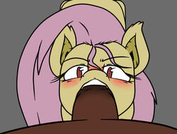 animal_genitalia bat blush brown_fur brown_penis duo equine faceless_male fangs fellatio female first_person_view flutterbat_(mlp) fluttershy_(mlp) friendship_is_magic fur grey_background hair half-closed_eyes horse horsecock looking_at_viewer male male/female mammal my_little_pony no_pupils open_mouth oral penis pink_hair plain_background pony sex sparkscut teeth yellow_fur