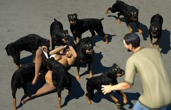 3d big_breasts bondage breasts canine canine canis3 clothed clothing female feral forced group human human_on_feral interspecies male male/female mammal nude peril pussy rottweiler wendy zoophilia