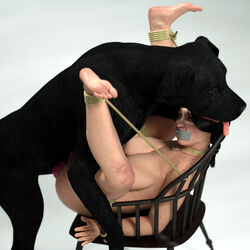 3d big_breasts bondage bondage bound breasts canine canine canis3 chair female feral forced human interspecies labrador mammal penetration rape shione tape_gag zoophilia