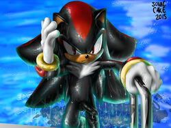 2015 anthro balls erection hedgehog looking_at_viewer male mammal penis shadow_the_hedgehog solo sonic_(series) sonic_cake swimming_pool wet