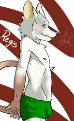 boxers bulge femboy fur furry furry_only male mammal mice mouse rat regis siriuswolfus solo