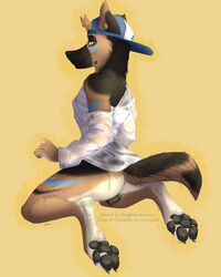 adventure_time animal_genitalia anthro anus baseball_cap bottomless canine canine_pussy clothed clothing digitigrade dog-bone female furry_only german_shepherd grey_eyes half-dressed hat hindpaw incorgnito kneeling looking_at_viewer mammal pawpads paws pussy simple_background skylar_(incorgnito) solo wet wet_clothing yellow_background