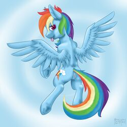 2015 absurd_res clitoris cutie_mark equine feathered_wings feathers female feral friendship_is_magic hair hi_res hooves long_hair looking_at_viewer mammal mephysta multicolored_hair my_little_pony outside pegasus pussy rainbow_dash_(mlp) rainbow_hair solo tongue tongue_out underhoof wings