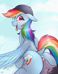 ambiguous_gender anal blush candyclops duo equine female friendship_is_magic hat licking mammal meggchan my_little_pony oral pegasus rainbow_dash_(mlp) rimming sex tongue tongue_out wings