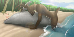 anthro anthro_on_feral beach cervine cetacean closed_eyes cum cum_in_pussy cum_inside deer dolphin duo erection female feral heart hi_res interspecies koba lying male male_on_feral mammal marine nude on_side outside penetration penis pussy sea seaside sex straight vaginal_penetration water zoophilia