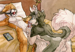 2015 anthro ass backsack ball_gag balls bed blue_eyes bondage bondage bound canine canine closed_eyes cum cum_on_chest cum_on_face cum_on_penis cum_on_self cum_on_stomach duo erection fox fur gag grey_fur grey_hair hair husky hybrid licking lying male male/male mammal nude open_mouth oral orange_fur penis rope ruaidri sex tongue tongue_out wolf
