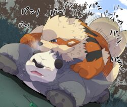 2015 all_fours anal anal_sex arcanine bear blue_eyes blush canine chubby doggy_style duo forest from_behind japanese_text male male/male mammal nintendo outside panda pangoro penetration pokemon sex sweat text tree video_games white_monkey