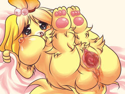 animal_crossing anthro bed black_nose blonde_hair breasts canine canine censored female fur hair hair_ornament isabelle_(animal_crossing) kuma25-ya mammal nintendo nipples nude pussy short_hair solo video_games white_fur yellow_fur