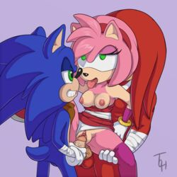 2boy amy_rose amy_rose/knuckles_the_echidna amy_rose/sonic_the_hedgehog anal anal_sex anthro echidna echidna_boy empty_eyes erection eye_roll female female femsub from_behind furry green_eyes hedgehog hedgehog_boy hedgehog_girl