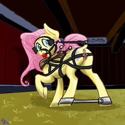 anatomically anus askfetishshy ball bar blinders bondage bound bridle correct equine eyewear feral fluttershy_(mlp) friendship_is_magic gag harryclopper horse invalid_tag is magic mammal my_little_pony pony pussy solo spreader