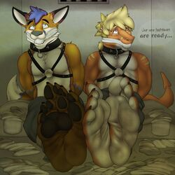 2016 anthro bed bondage bondage bound brown_fur canine clothed clothing collar crying daniel156161_(character) detailed_background dirty_feet dragon duo feet foot_fetish footwear fox fur hair jwolfsky legwear lizard male male/male mammal multicolored_fur musk pants reptile scalie smelly smelly_feet socks sweat tears text turtleroadkill_(character)