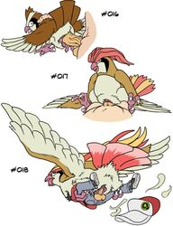 2013 avian balls bird brown_feathers clothed clothing cowgirl_position duo female female_on_top feral flying from_behind hat human interspecies josemalvado male nintendo penetration pidgeot pidgeotto pidgey plain_background pokemon pokephilia sex size_difference straight text vaginal_penetration video_games white_background white_feathers zoophilia