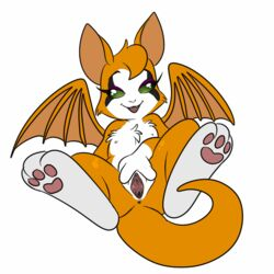anus dust:_an_elysian_tail dust:_an_elysian_tale female fidget lonbluewolf nimbat nude paws plain_background pussy solo spread_legs spread_pussy spreading video_games white_background wings