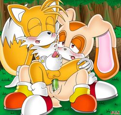 anal blush cream_the_rabbit cum dildo double_dildo duo female forest male pegging penis pussy pussy_juice sega sex_toy sonic_(series) tails tree