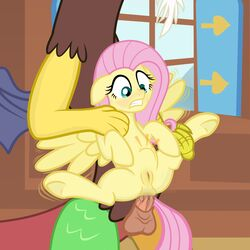 20pixels anal anal_sex balls brown_fur clenched_teeth clitoris discord_(mlp) draconequus duo equine faceless_male female fluttershy_(mlp) friendship_is_magic fur hair horse looking_down male male/female mammal my_little_pony pegasus penetration penis pink_hair pony pussy scalie sex size_difference spread_legs spreading stomach_bulge teeth wings yellow_fur