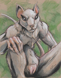 2014 anatomically_correct anatomically_correct_pussy anthro colored_pencil_(artwork) coypowers female guild_wars guild_wars_2 looking_at_viewer mammal pussy rat rodent skritt solo traditional_media_(artwork) video_games