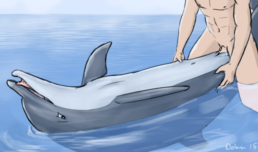 female-dolphin-sex